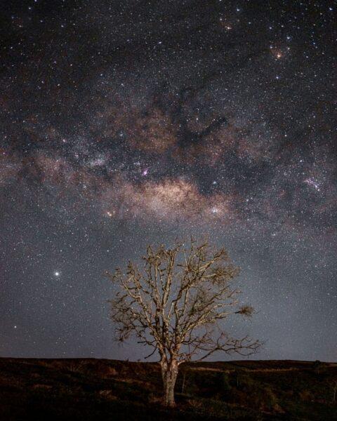 hình ảnh đà lạt bầu trời đêm đầy sao