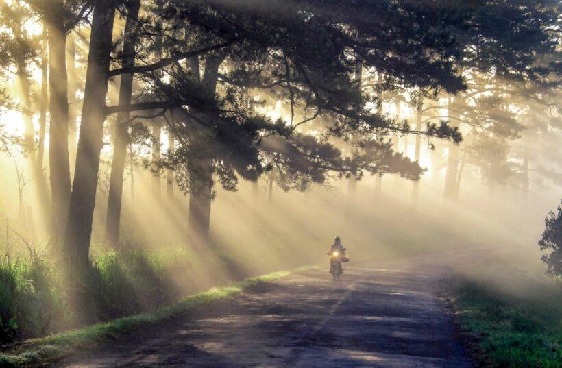 hình ảnh đà lạt và con đường mờ sương