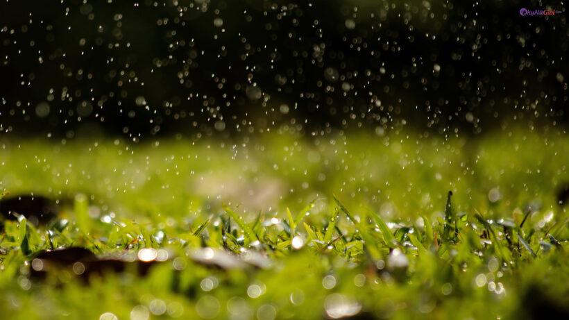 hình ảnh mưa rơi đẹp lãng mạn