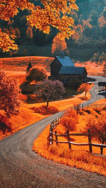 hình ảnh mùa thu yên bình