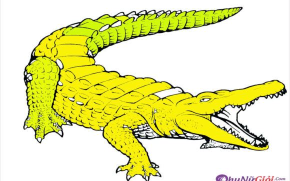 Tranh tô màu cá sấu