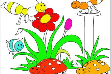 Tranh tô màu côn trùng