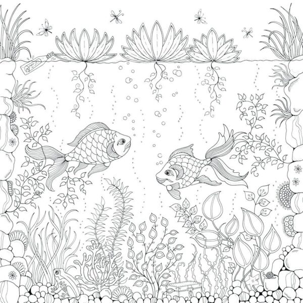 Tranh vẽ hai con cá đang bơi dành cho người lớn tô màu