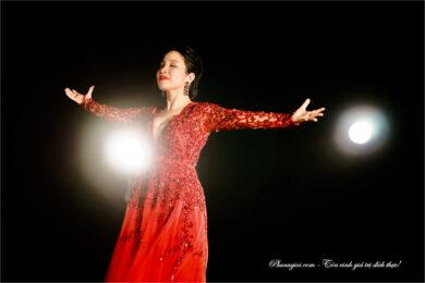 ca sĩ Mỹ Linh vẻ đẹp không tuổi