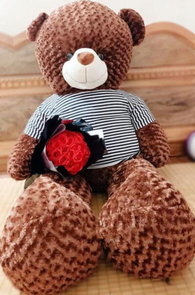 Hình ảnh gấu teddy dễ thương dành cho điện thoại