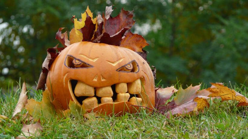 Hình ảnh quả bí ngô khắc trong lễ halloween