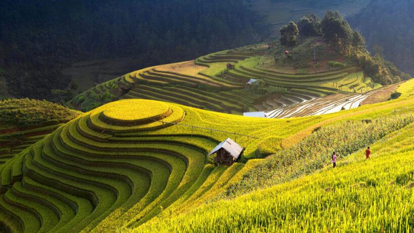 Cảnh đẹp thiên nhiên Việt Nam (88)