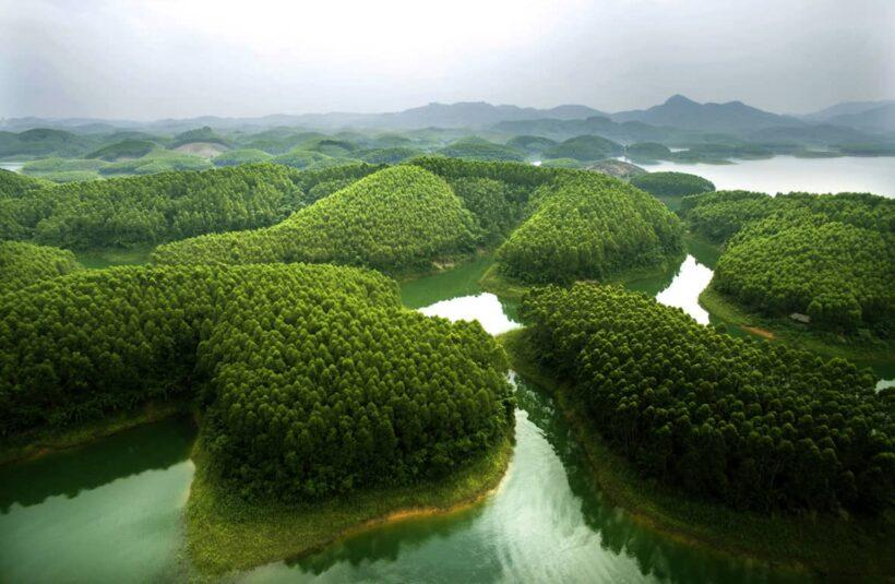 Cảnh thiên nhiên đẹp ở Gai Lai