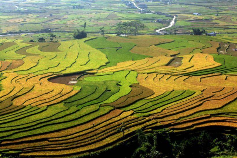 Hình ảnh đẹp thiên nhiên Việt Nam (48)