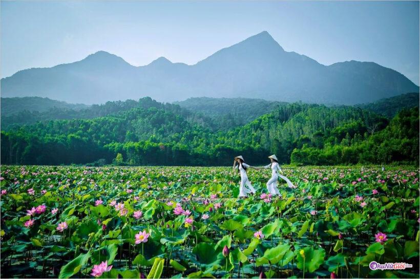 Hình ảnh đẹp thiên nhiên Việt Nam, chất lượng cao