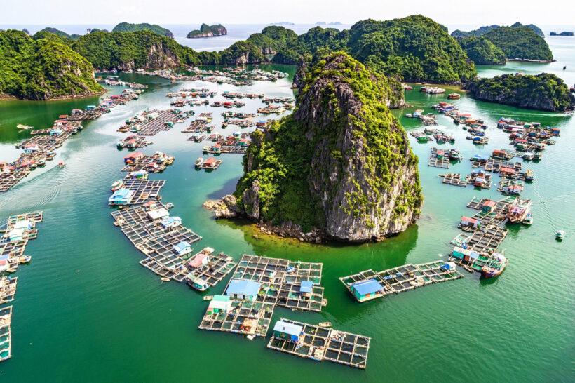 Ngắm nhìn vẻ đẹp thiên nhiên Việt Nam