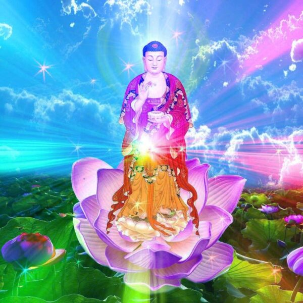 Hình ảnh Phật A Di Đà đứng trên đài Sen
