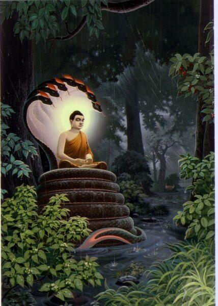 Hình ảnh Phật Thích Ca Mâu Ni cực ấn tượng