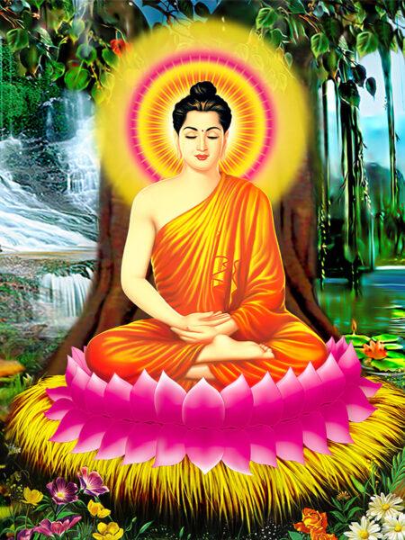 Hình ảnh Phật Thích Ca Mâu Ni thiền định