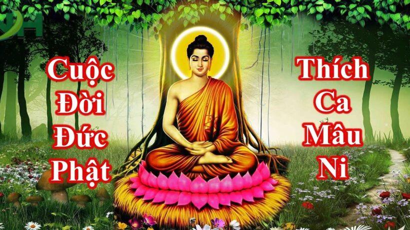 Hình ảnh Phật Thích Ca Mâu Ni toả hào quang dưới gốc cây Bồ Đề