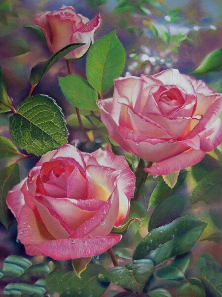 Tranh vẽ hoa Hồng đẹp, chân thực nhất