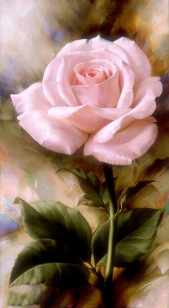 Tranh vẽ hoa Hồng trắng đẹp